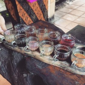 Bali ochutnávka kávy